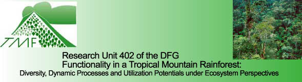 "Logo of the Research Unit of the DFG: ""Tropical Mountain Rainforest (TMF); DFG = Deutsche Forschungsgemeinschaft (central public funding organization for academic research in Germany)"